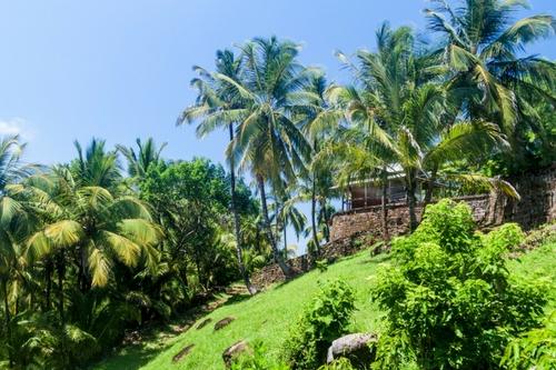 îles Salut