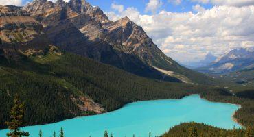 Terra incognita : le Canada côté sauvage