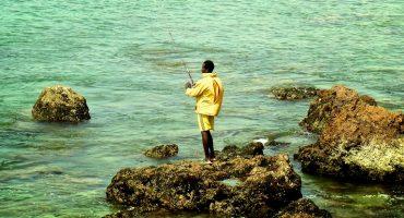 Terra incognita : écotourisme au Sénégal