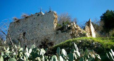 Petites perles d'Israël : voyage autour de Jérusalem (1/2 – le nord)