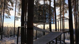 Tree Hotel, Suède