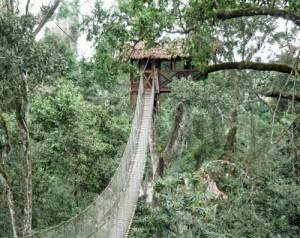 Inkaterra Reserva Amazona Pérou