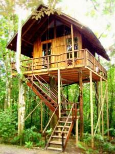 Tree Hotel Costa Rica