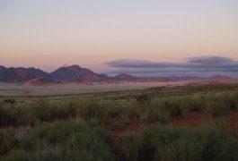 Namibie : le premier littoral du monde protégé à 100%