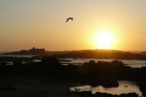 Essaouira, coucher de soleil