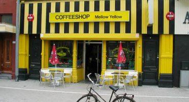 Amsterdam ferme ses coffee shops aux touristes