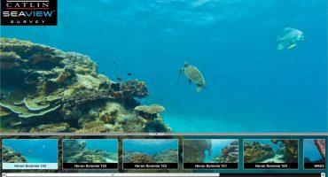 Google la « pieuvre » met la tête sous l'eau