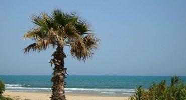 Sécurité : faut-il aller en Tunisie cet été ?