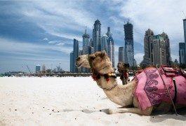 La plus grande roue panoramique du monde sera à Dubaï