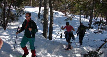 Randonnée dans les Vosges enneigées : à vos raquettes !
