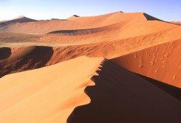 Photos : les beautés du désert du Namib