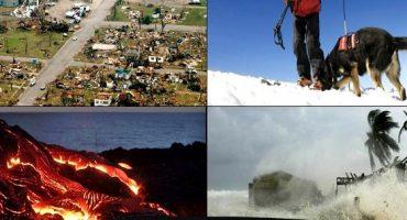 Le tourisme de catastrophe a le vent en poupe