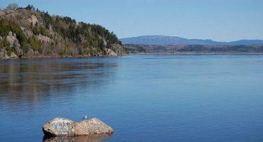 Canada : observer des baleines dans l'estuaire du Saint-Laurent (1/2)