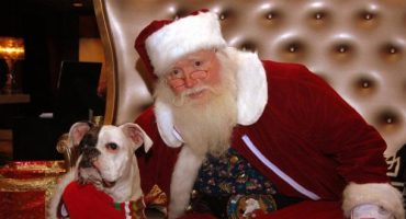 Le Père Noël vous dit tout !