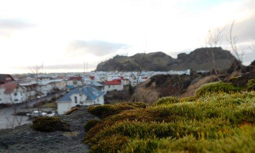 Vestmannaeyjar2
