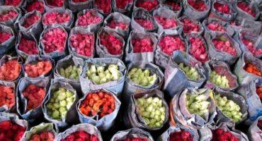 Top 7 des marchés aux fleurs dans le monde