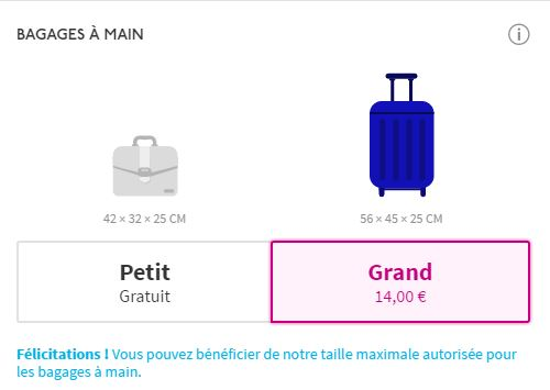 bagage mains wizzair