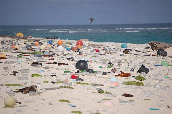 plage - plastique - 3
