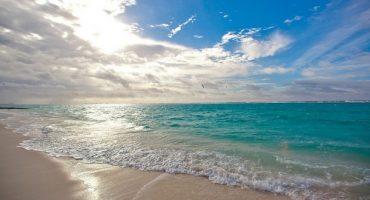 Où trouver des plages propres cet été ?