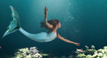 Les Sirènes Academies : voyagez et devenez une véritable sirène !