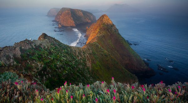 Channel Islands - Californie