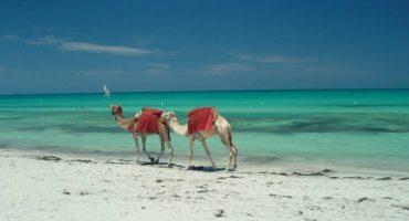 Vols en promotion pour partir en Tunisie avec Transavia