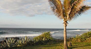 Air Austral met en vente ses billet d'avion pour la Réunion cet été
