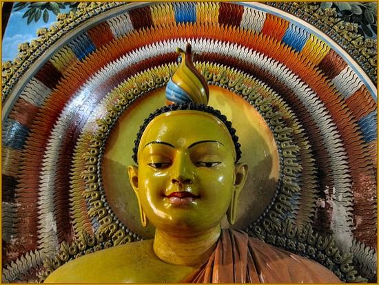 sri lanka-buddha