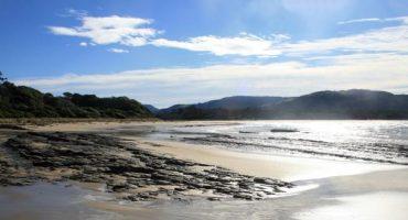 Pourquoi vous devriez visiter les Catlins en Nouvelle-Zélande