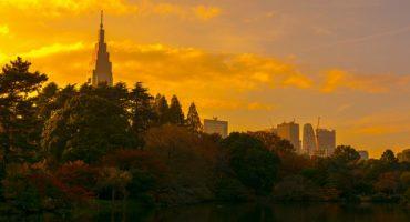 Japon : des ninjas pour faire oublier Fukushima