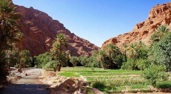 Vallée du Todra - Maroc