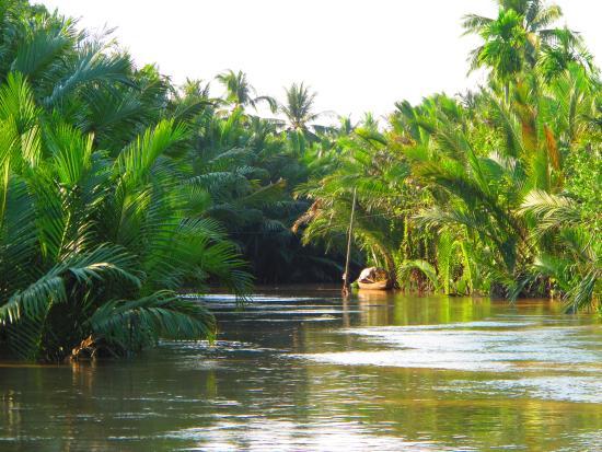 arroyo delta du Mekong