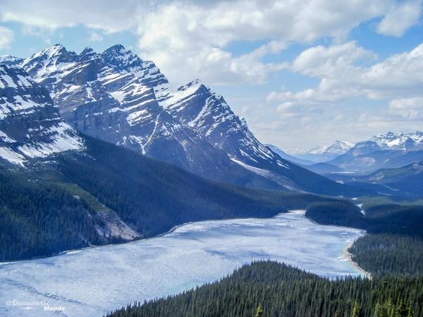 Le lac Peyto sur la promenade des glaciers en Alberta.