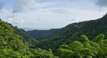 Première édition du Raid des Alizés en Martinique