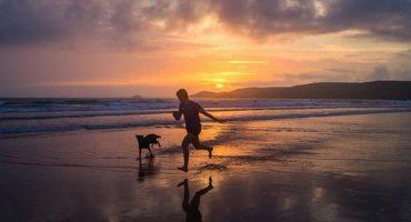 Les 5 meilleurs pays pour voyager avec son chien