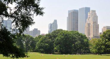 Paris – New York à partir de 180 € avec Norwegian dès cet été !
