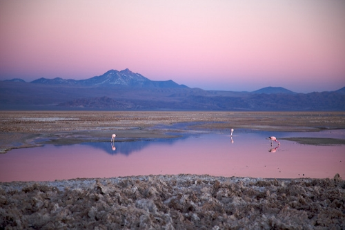 Salar d'Atacama, plus grand dépôt salin du Chili