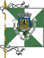 drapeau Porto
