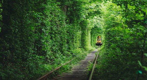 Tunel de l'amour Ukraine iStock
