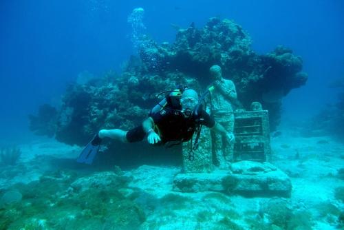 photo sous l'eau musée