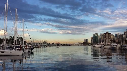 Angélique - Vancouver ville 500