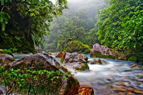 Celeste river with mineral-rich water in Tenorio  national park, Costa Rica