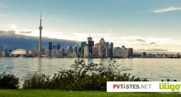 Témoignages : la ville de Toronto vue par ses habitants