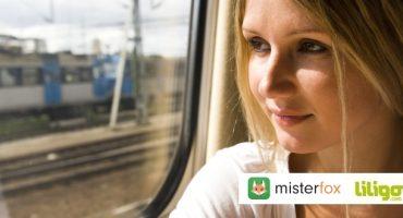Infographie : les Français et le voyage en train