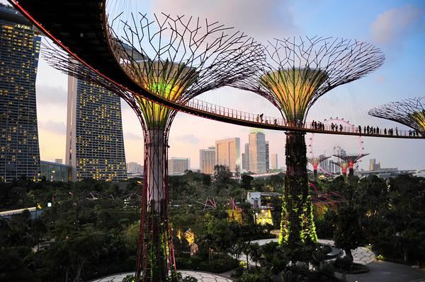 singapour jardin futuriste