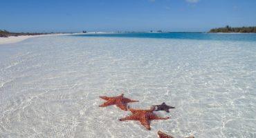 Promos sur les vols à destination des Caraïbes !