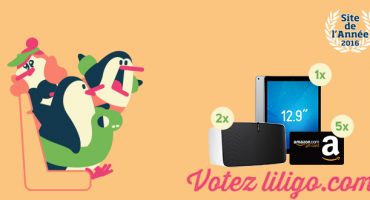 Site de l'année 2016 : liligo a besoin de vous !