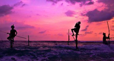 Destination de la semaine : le Sri Lanka