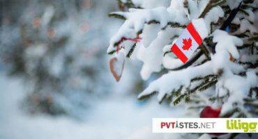 La magie de Noël au Canada : où et comment passer les fêtes dans le Grand Nord ?