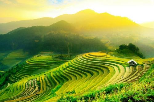 Les rizières en terrasses de la région de Mu Cang Chai